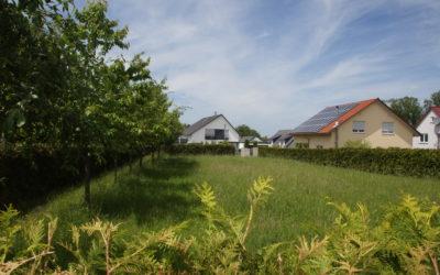 Löwenstein-Hirrweiler : Einmaliges Grundstück in Traumlage