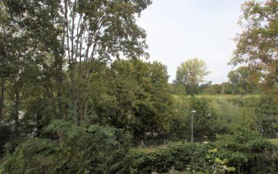 Heilbronn-Sontheim: wunderschöne 2-Zimmer Wohnung Hochparterre